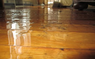 Long Term Water Damage